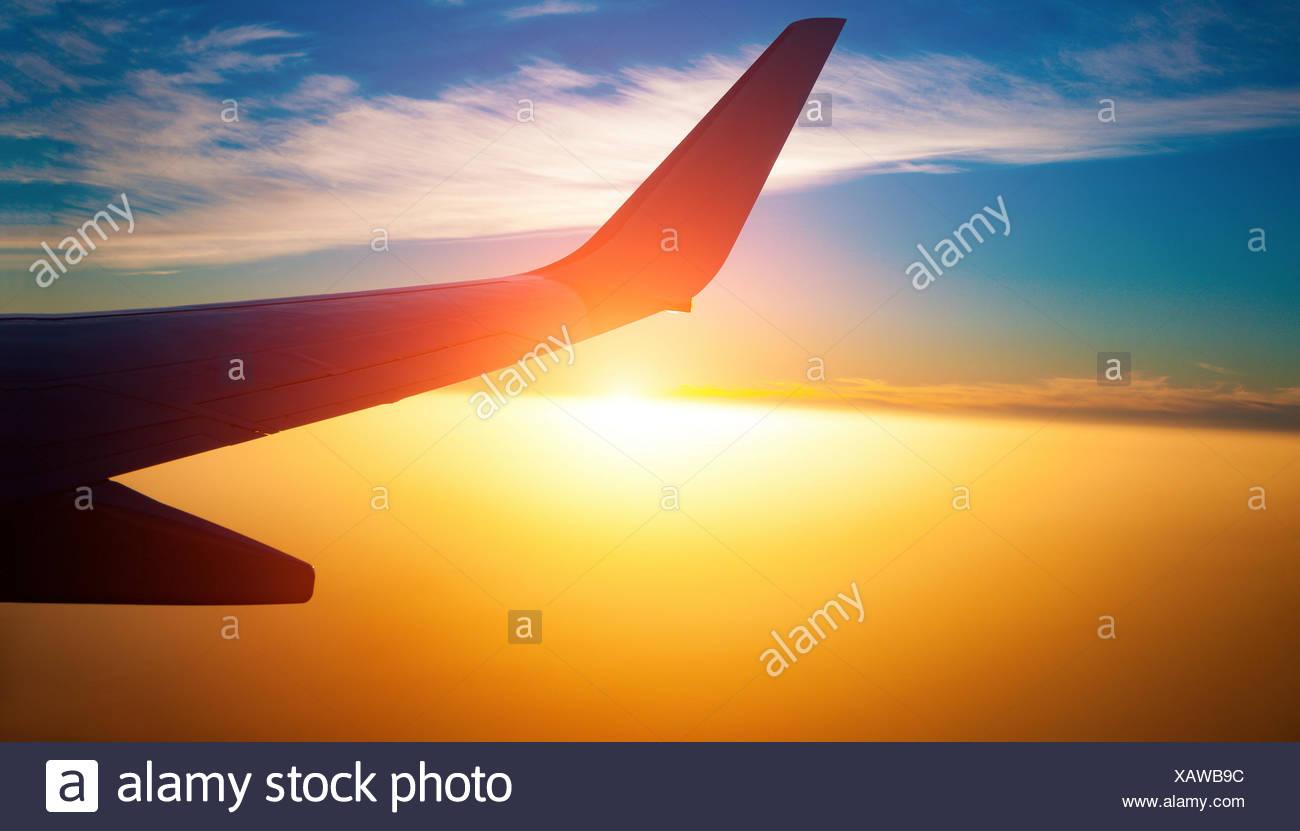 Aeroplane wing at sunset. - Stock Image