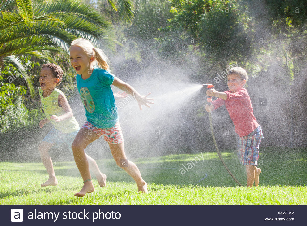 Three children in garden chasing each other with water sprinkler - Stock Image