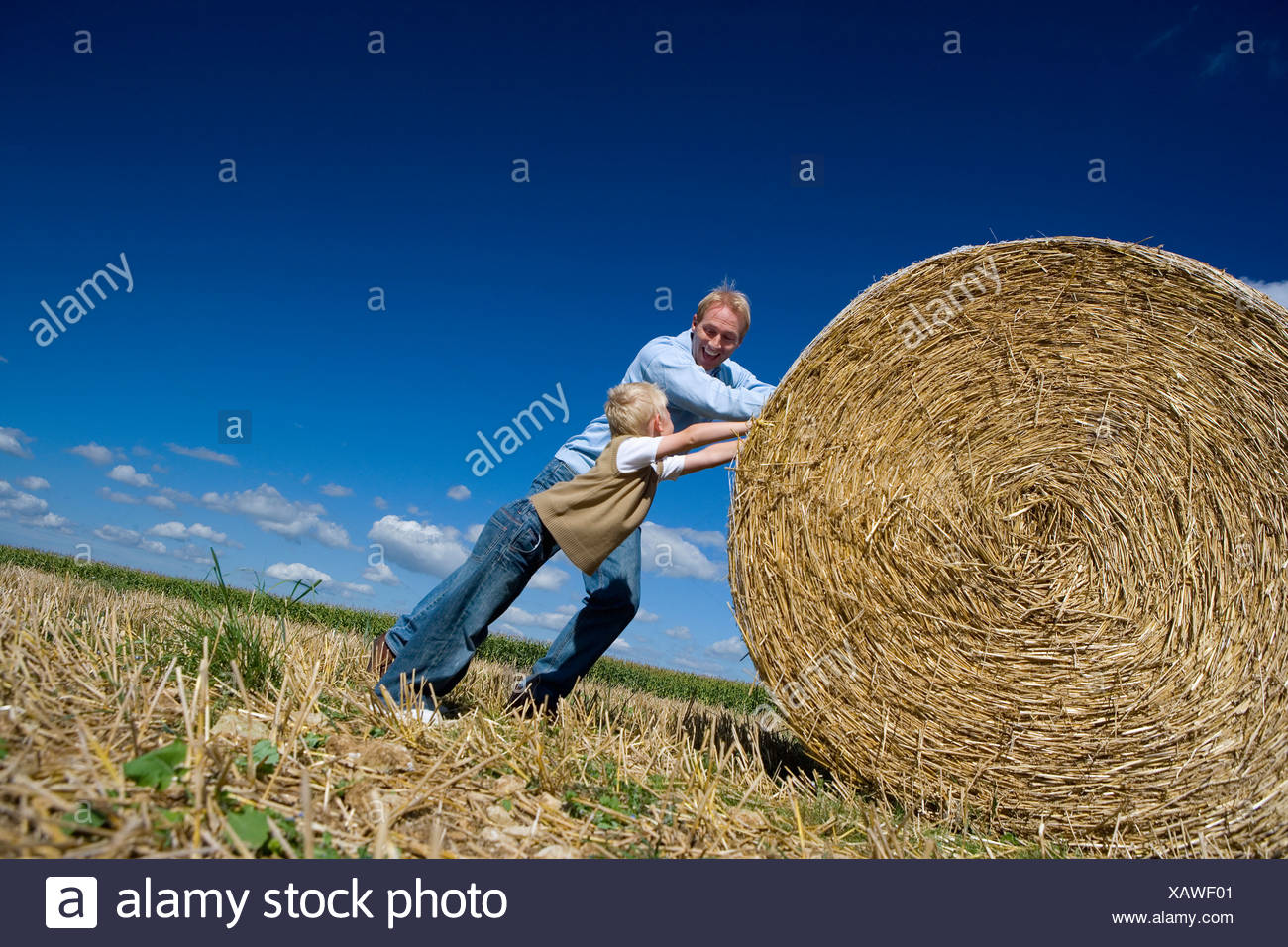 Father and son (7-9) pushing bale of hay in field (tilt) - Stock Image