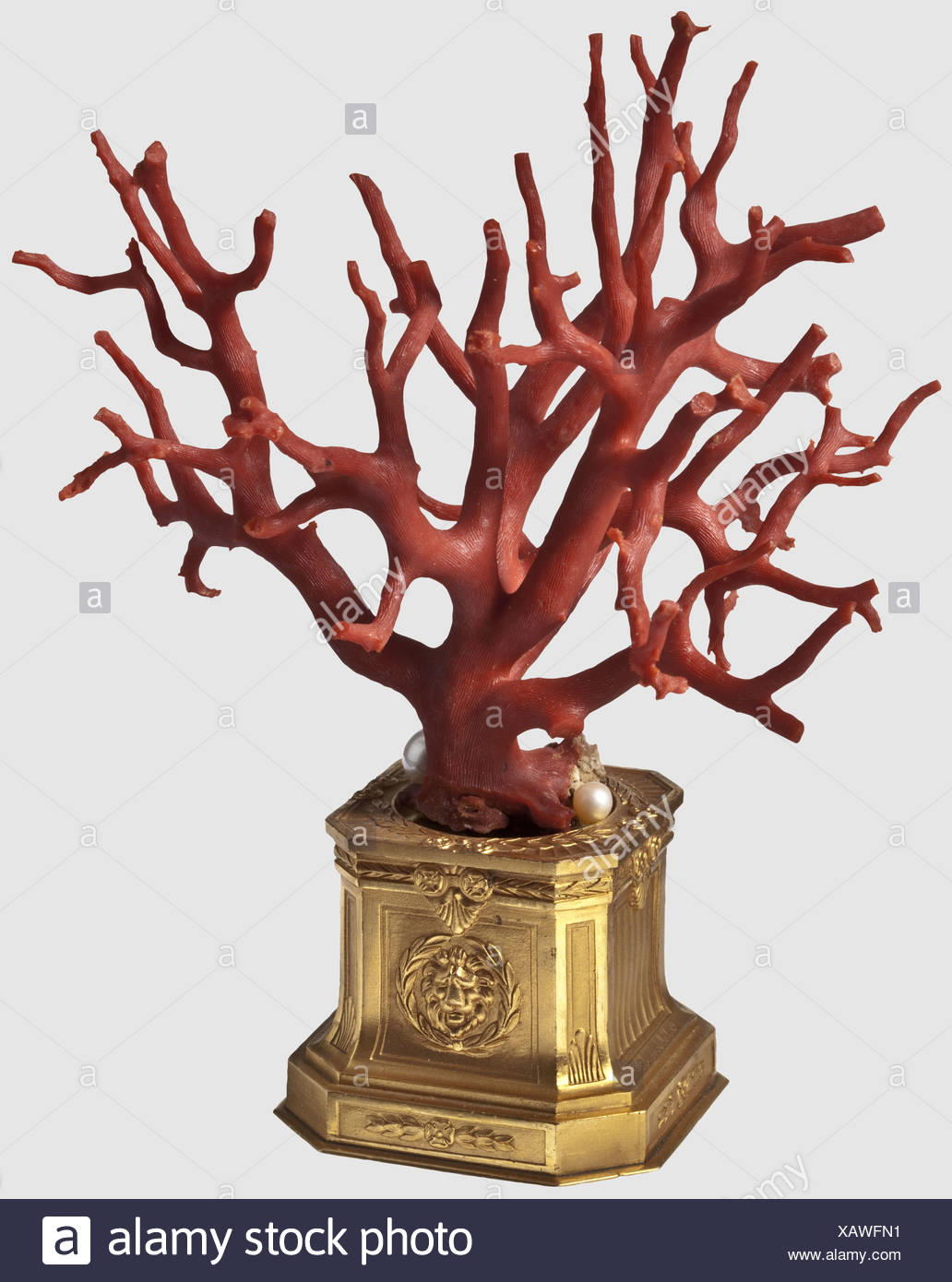 A tree-shaped coral, Southern Italy, 19th century A richly branching tree of precious coral with three pearls attached to the base. Mounted on a tiered, gilded, brass base with lion heads in relief on two sides. Total height 18 cm, historic, historical, 19th century, handicrafts, handcraft, craft, object, objects, stills, clipping, clippings, cut out, cut-out, cut-outs, fine arts, art, artful, Additional-Rights-Clearences-NA - Stock Image