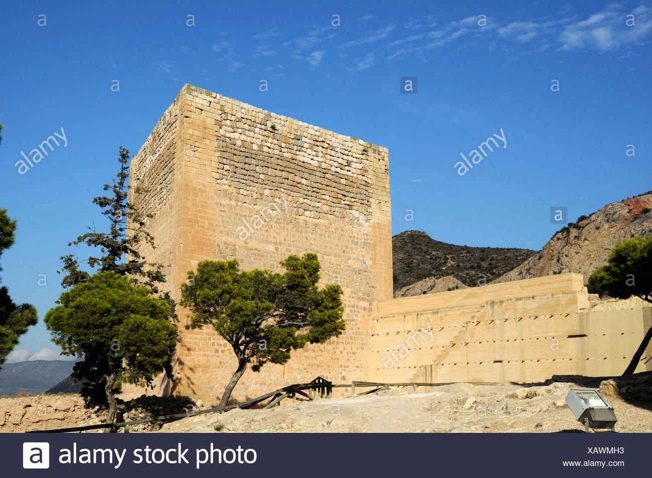 Ruins of La Mola's Castle, fortress from the Moorish era, Novelda, Costa Blanca, Spain, Europe - Stock Image