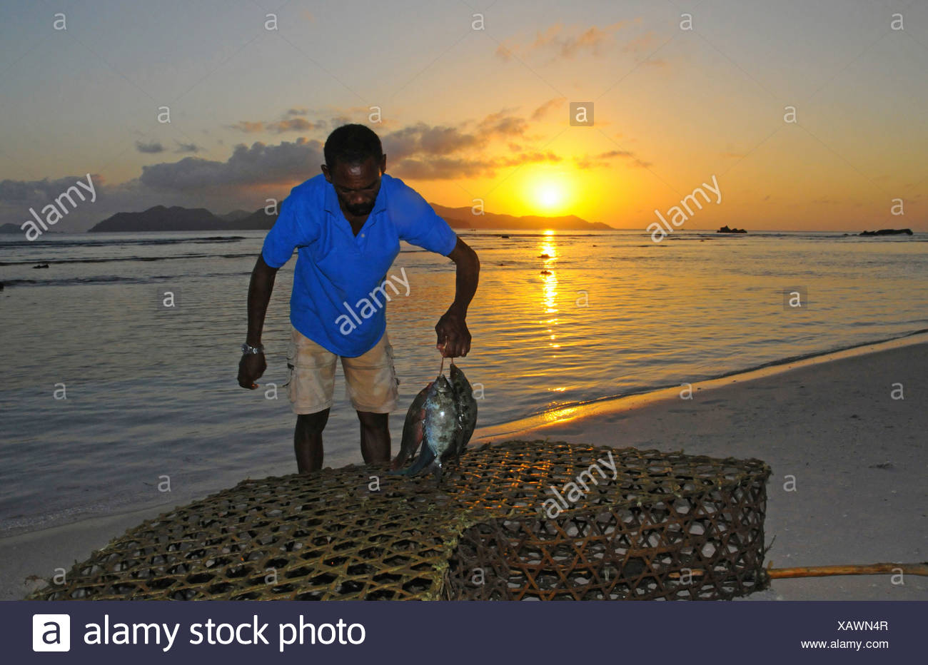 Fisherman carrying fish in front of a sunset, Anse Severe, La Digue, Seychelles - Stock Image