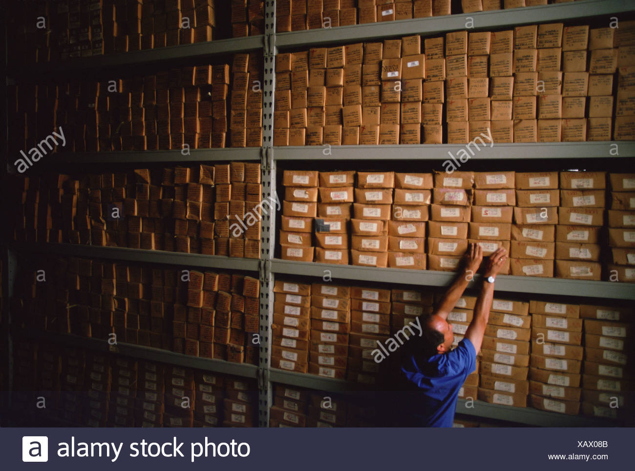 Core samples in storage. - Stock Image