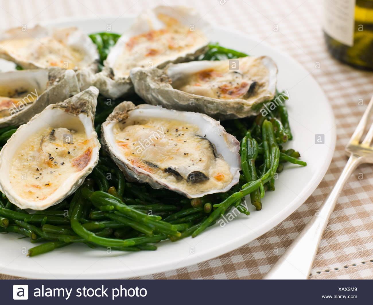 gourmet,seafood,gratin,oysters - Stock Image
