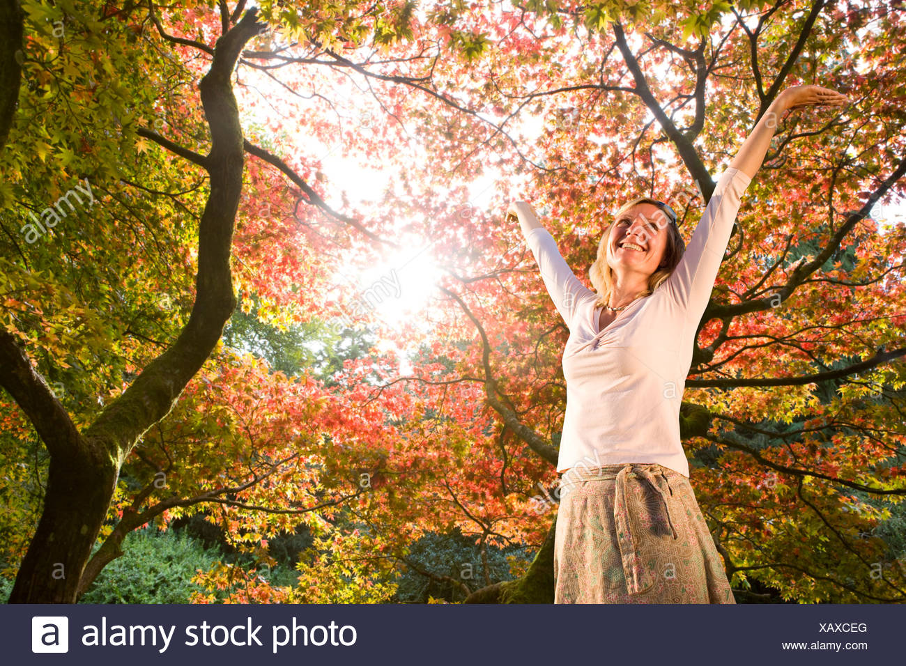 Woman standing below autumn trees with arms raised - Stock Image