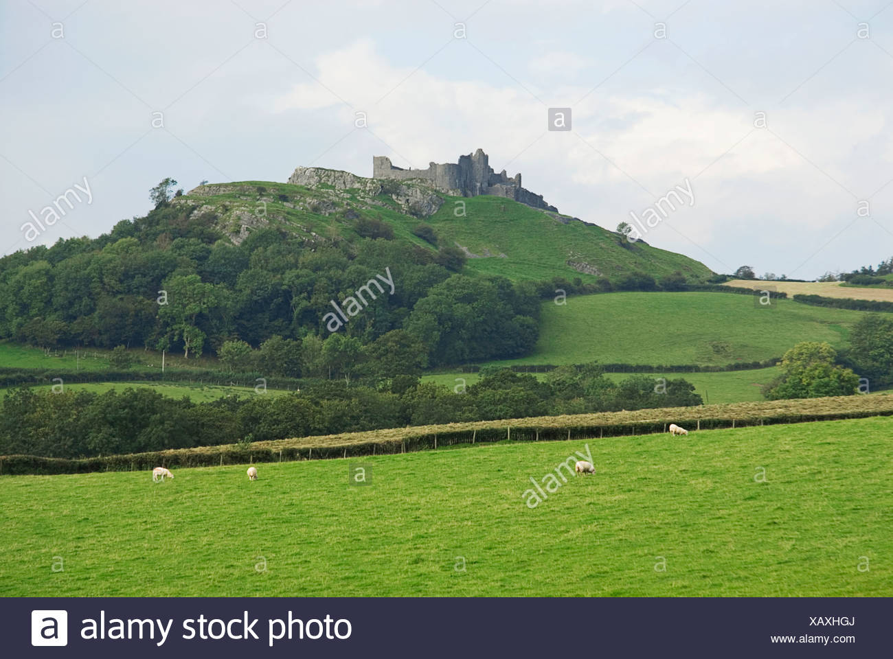 Great Britain, Wales, Carreg Cennen Castle, ruined castle on hill - Stock Image