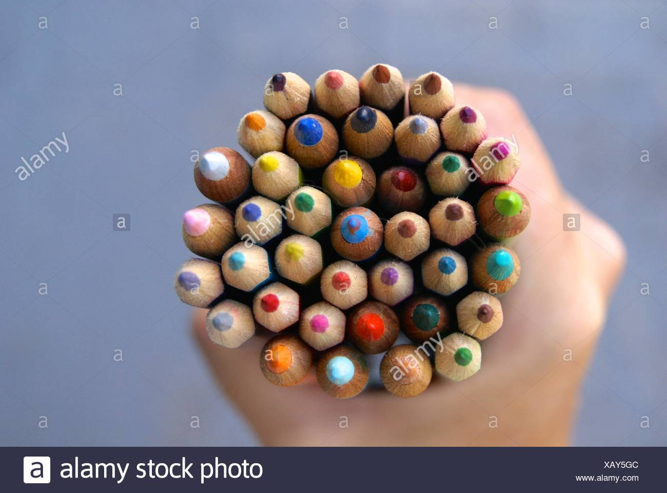 Human hand holding colored pencils - Stock Image