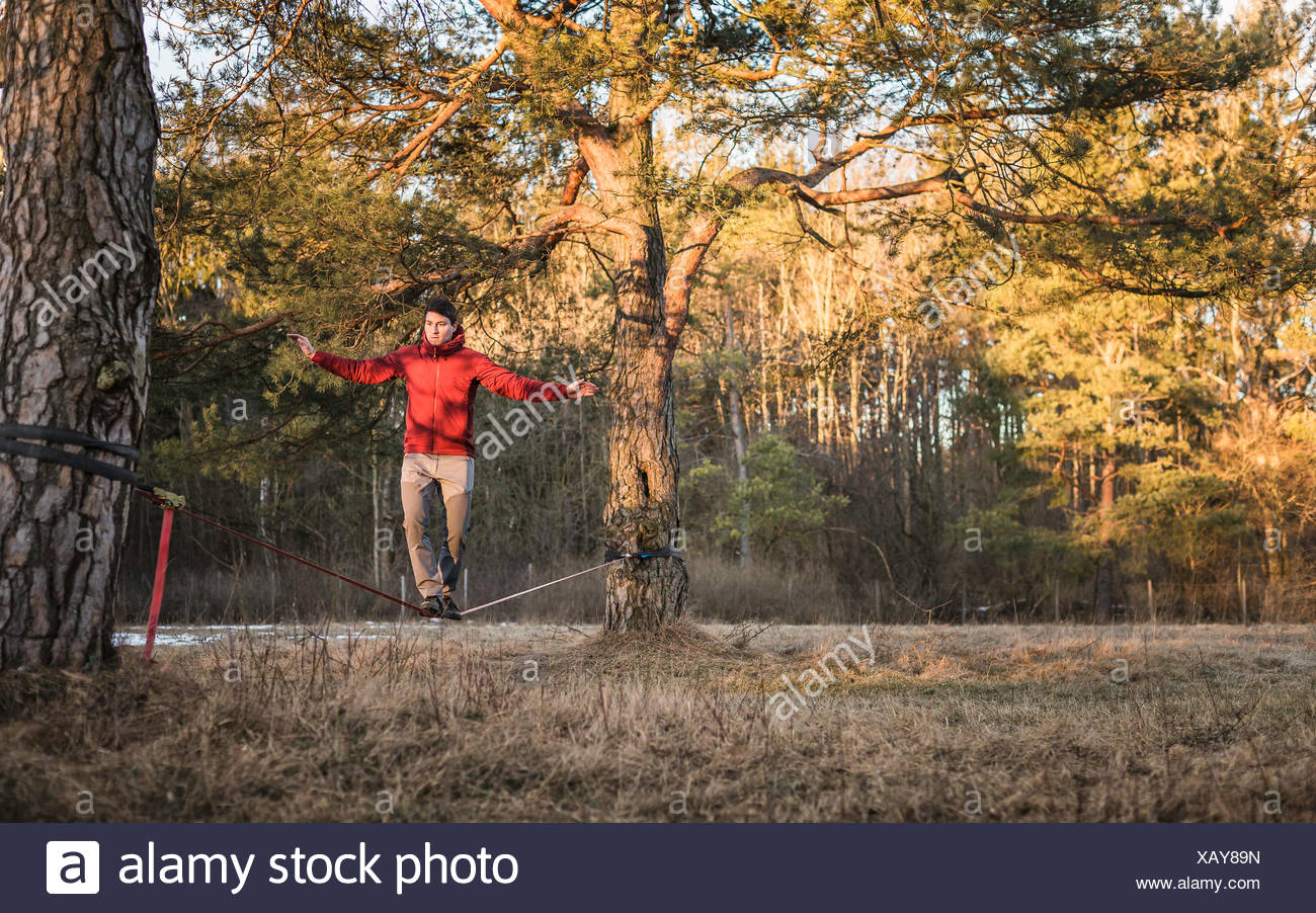 Young man balancing on slackline in forest - Stock Image