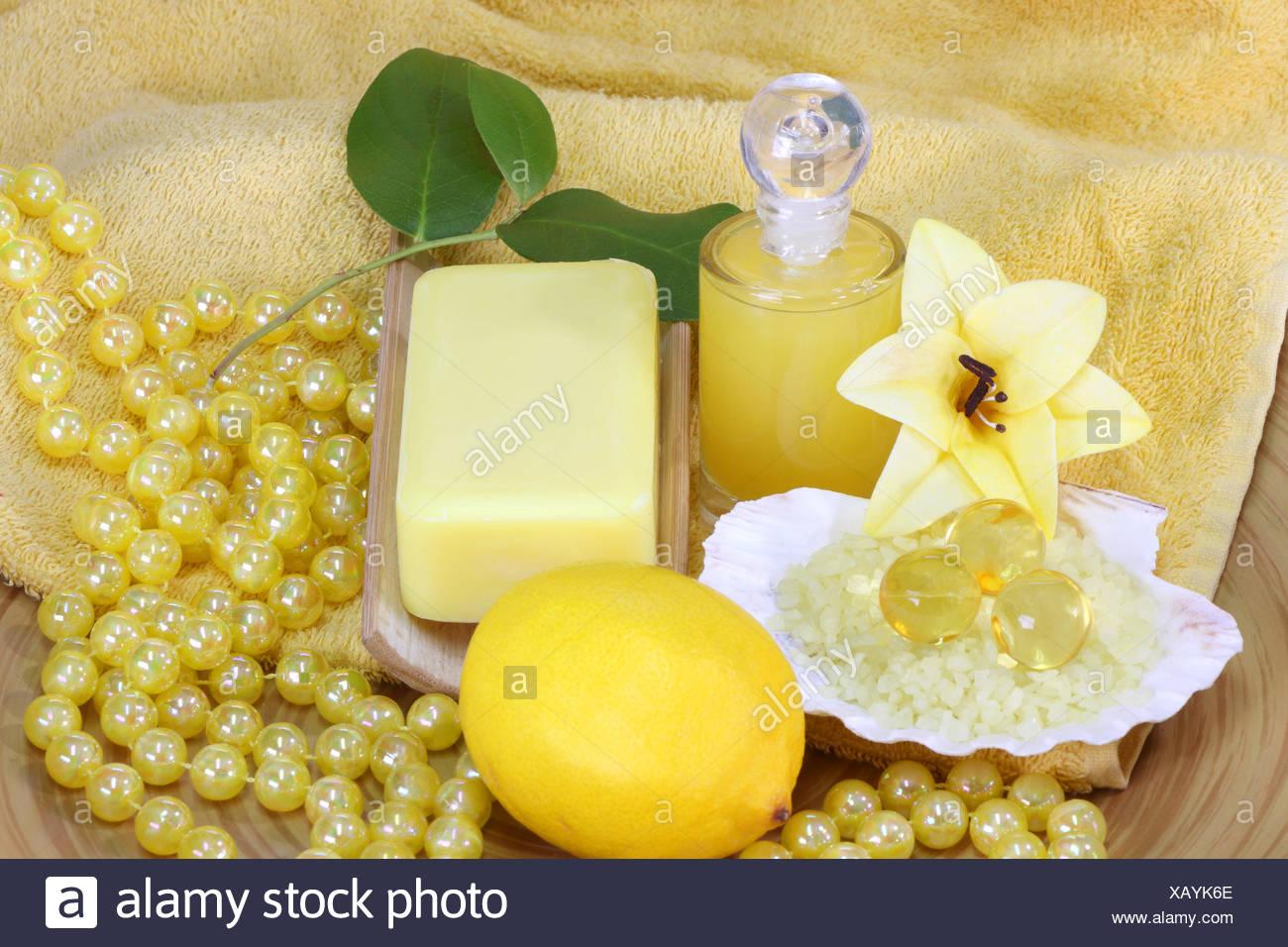 Soap Maintenance Medium Skincare Shell Decoration Hygiene Decorative