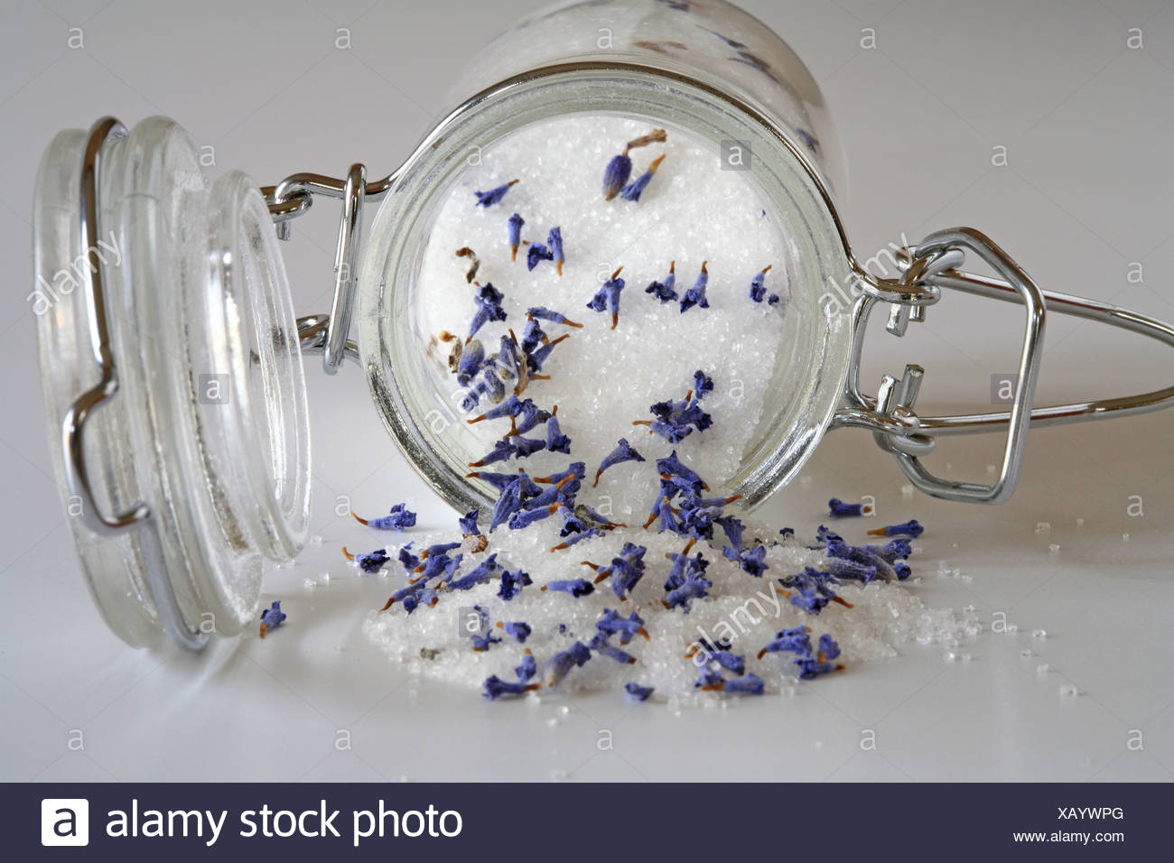 Fine grained sugar with dried lavender blossoms in a preserving jar - Stock Image