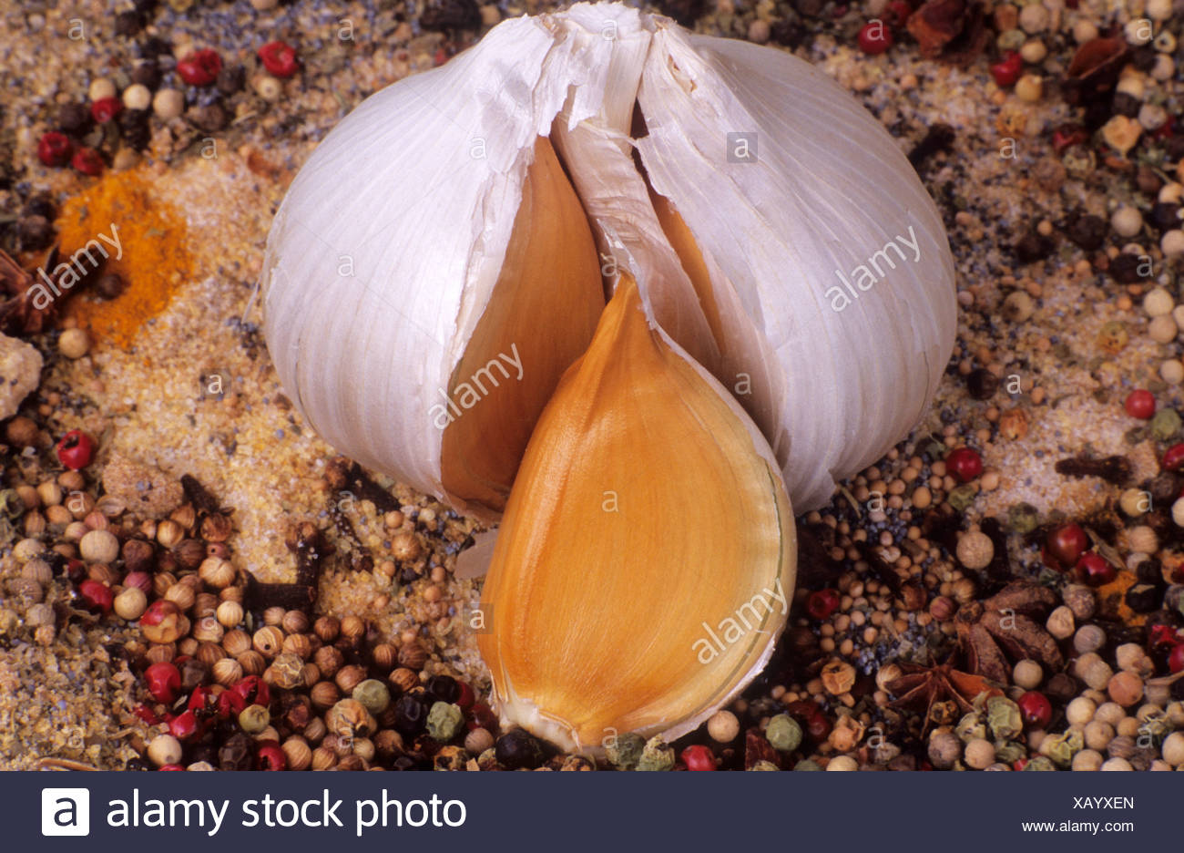 Garlic, Elephant Garlic with Spices - Stock Image
