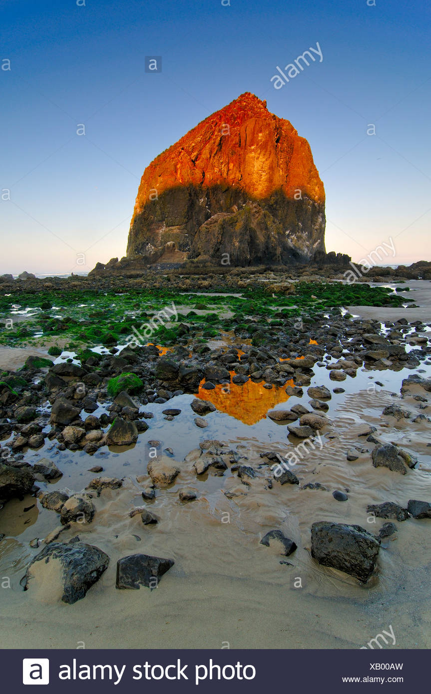 Famous 'Haystack Rock' monolith, solidified lava rock at Cannon Beach, tourist attraction, Clatsop County, Oregon, USA - Stock Image