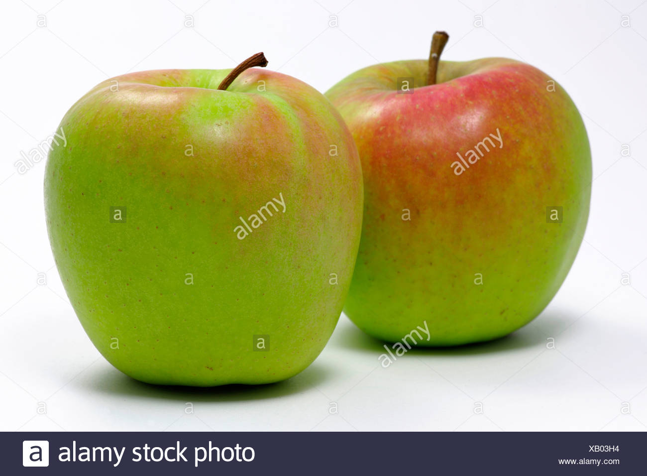 Golden Delicious apples - Stock Image
