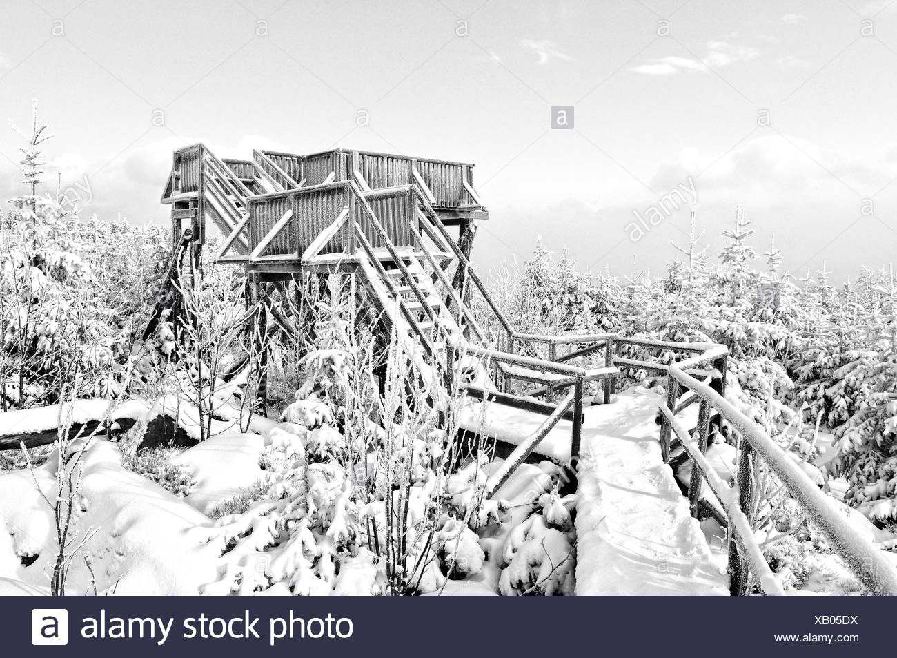 Lotharpfad observation tower Black Forest Germany Stock Photo
