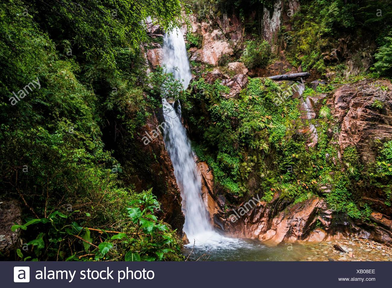 Waterfall of the Virgin (Cascada de la Virgen), Coyhaique and Aysén Regions, Puerto Chacabuco, Patagonia, Chile, South America. - Stock Image