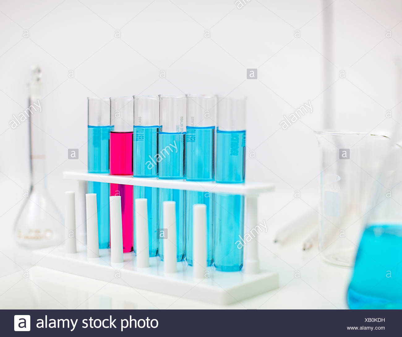 Rack of test tubes in lab - Stock Image