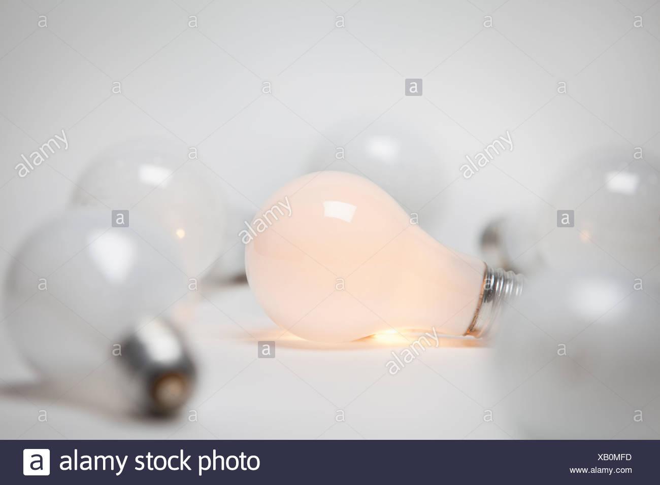 Studio shot of light bulbs - Stock Image