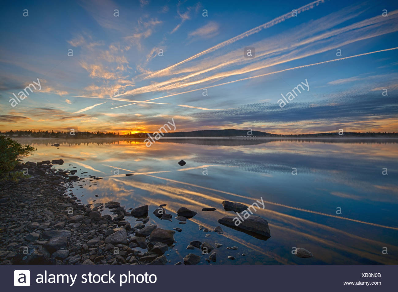 Vapor trails on sky at sunset - Stock Image