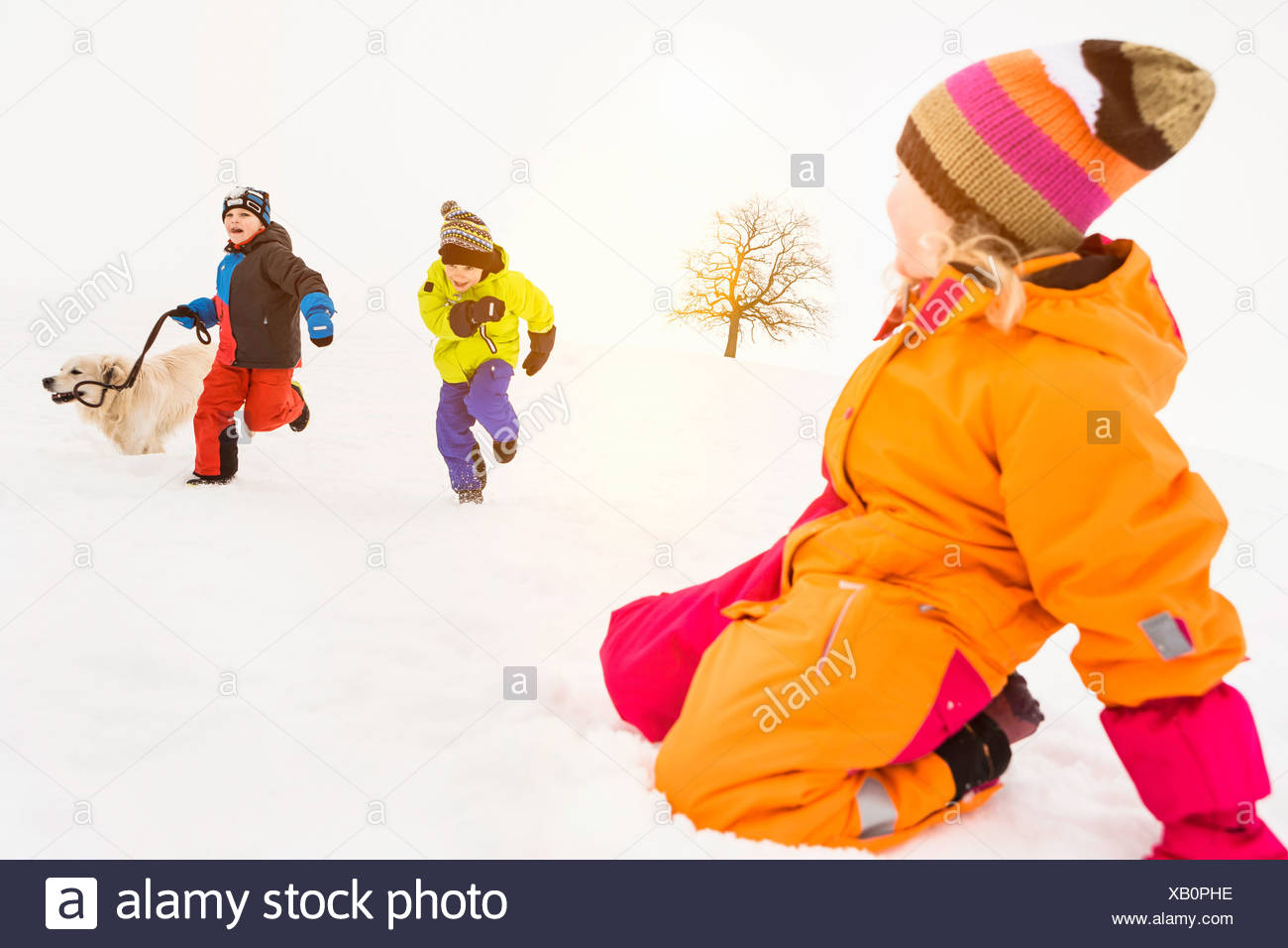 Two boys running in snow with dog, girl kneeling in foreground - Stock Image