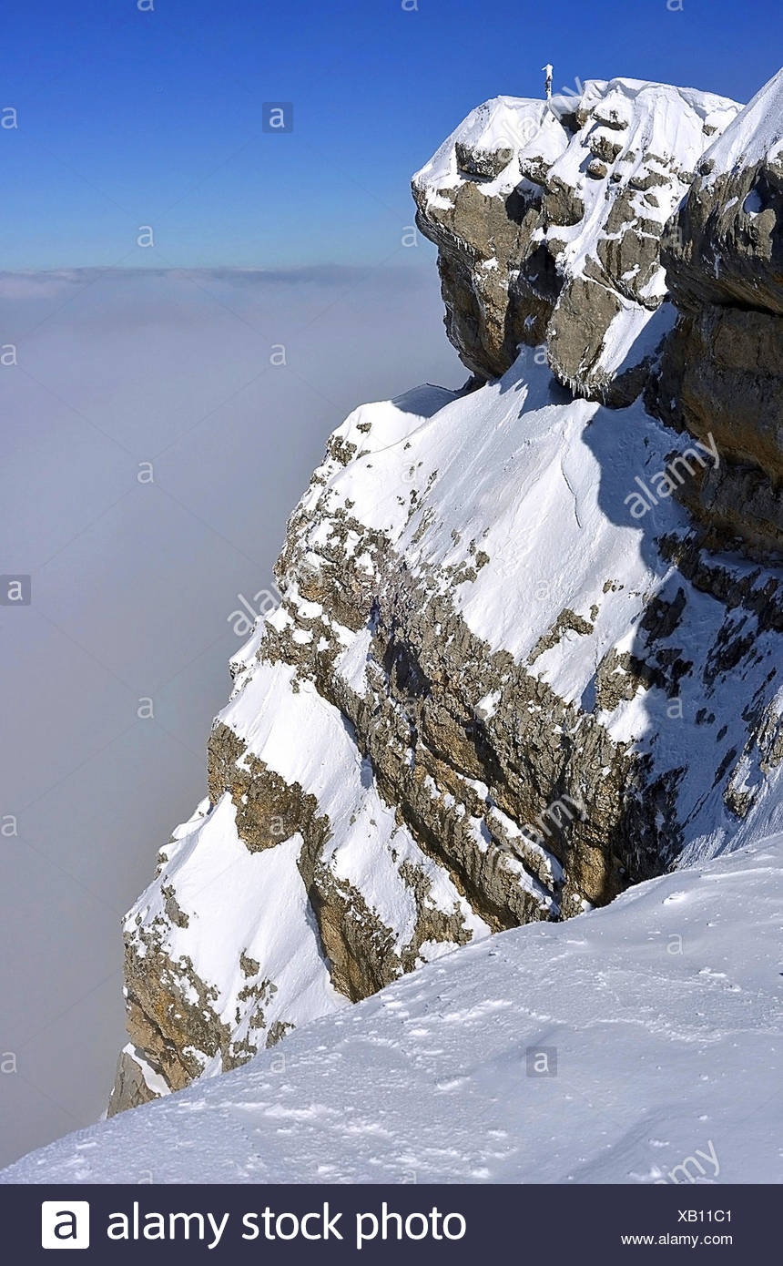 Summit in natural park of Chartreuse, France, Isere, Grenoble - Stock Image