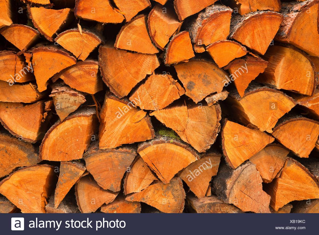 Firewood pile, Ninemile Remount Depot and Ranger Station, Lolo National Forest, Montana. - Stock Image
