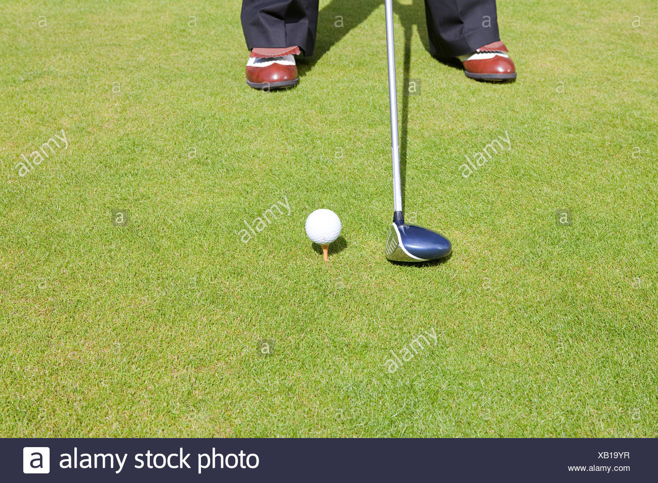 Cropped image of a golfer - Stock Image