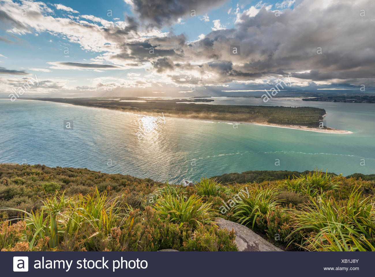 Panoramic view of Matakana Island, view from Mount Maunganui, Bay of Plenty Region, North Island, New Zealand - Stock Image