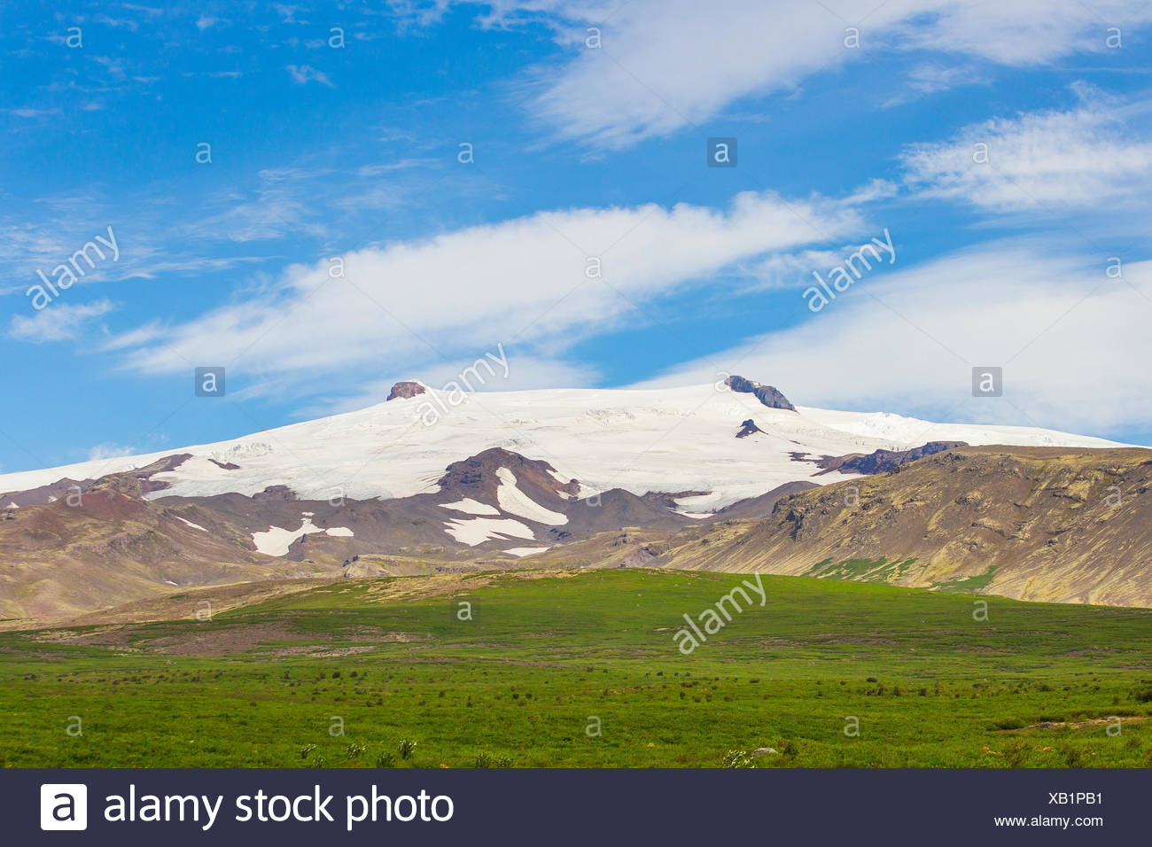 Snow-capped mountains and lush meadows on the south coast of Iceland. - Stock Image