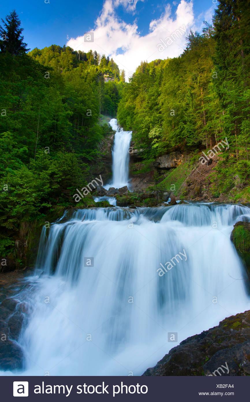 Giessbach, Switzerland, canton Bern, Bernese Oberland, wood, forest, brook, waterfalls, nature Stock Photo