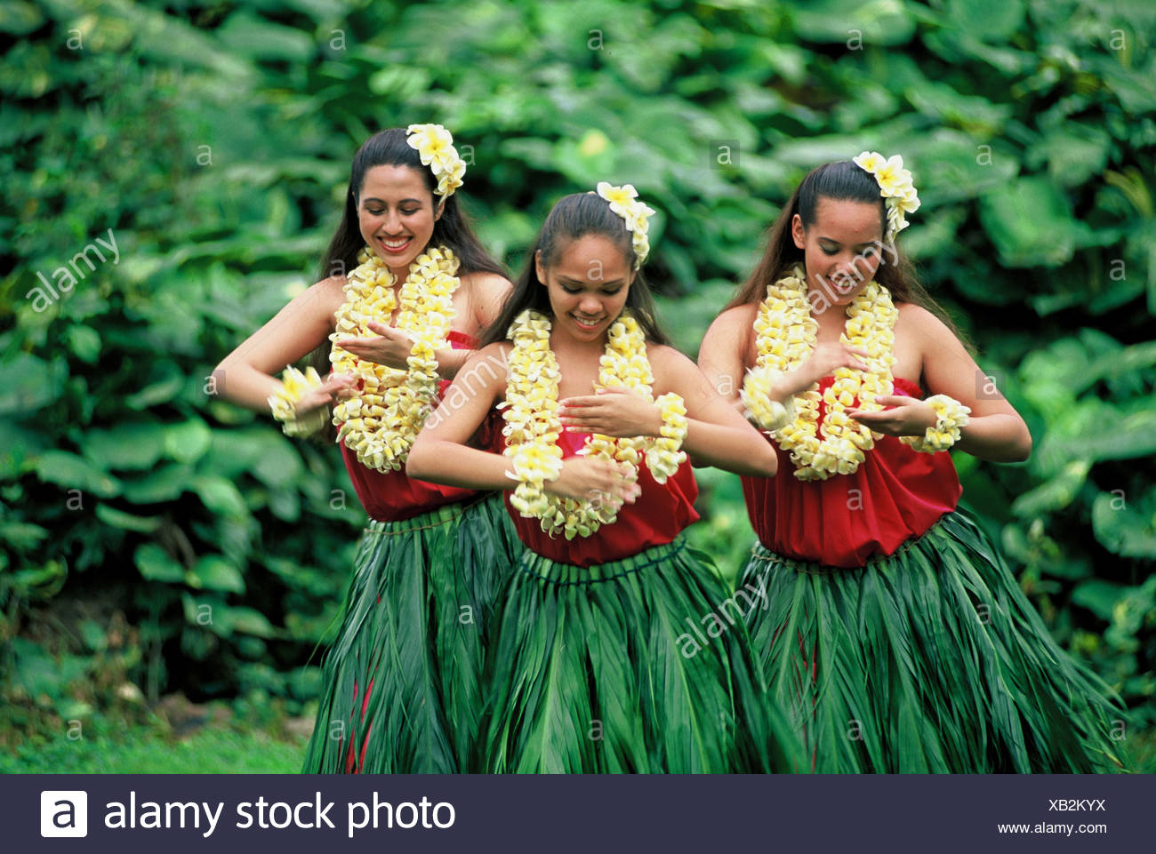 Three Hula Dancers in ti leaf skirts and yellow plumeria leis performing an Auana style hula Stock Photo