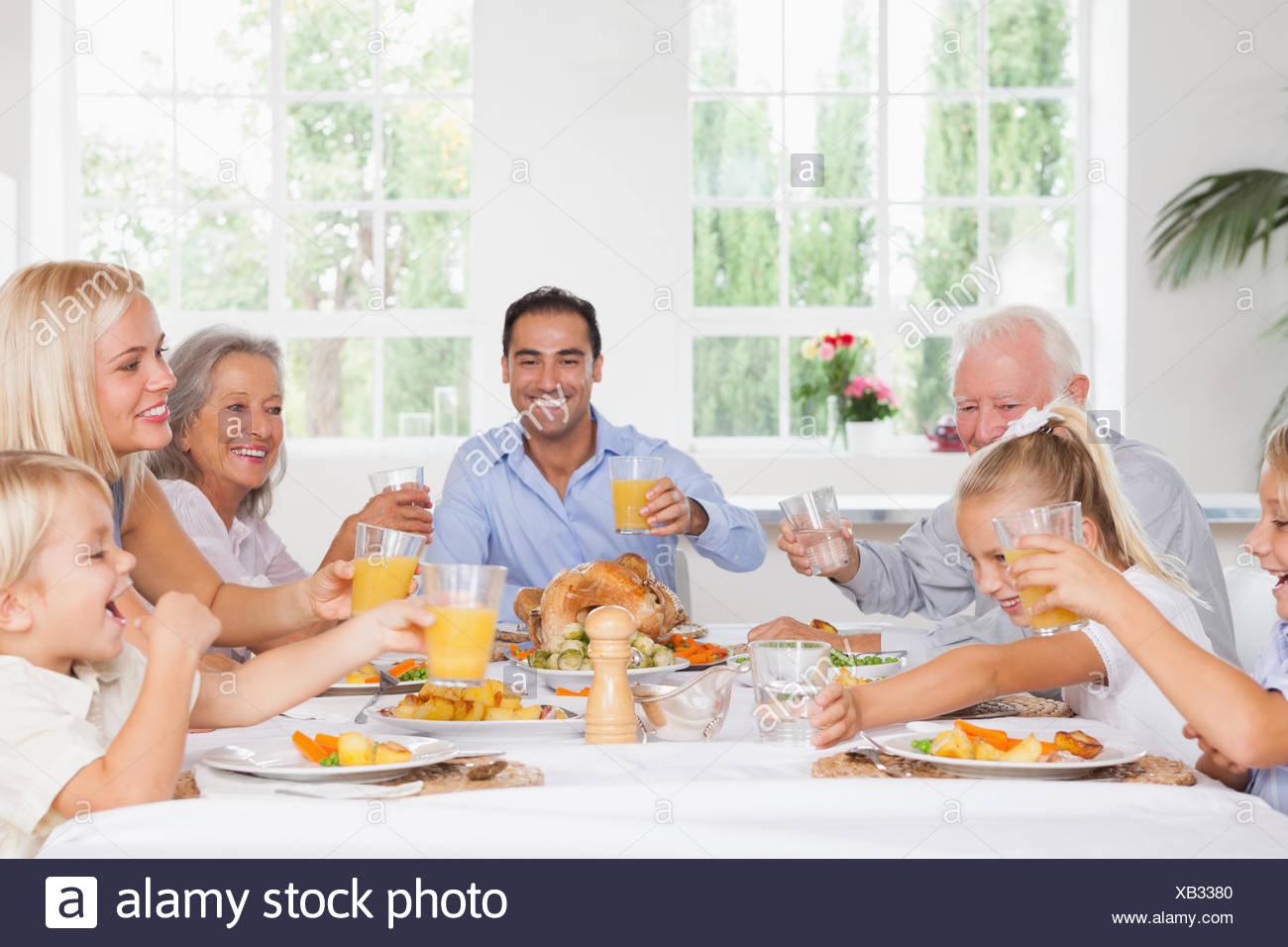 Family toasting at thanksgiving - Stock Image