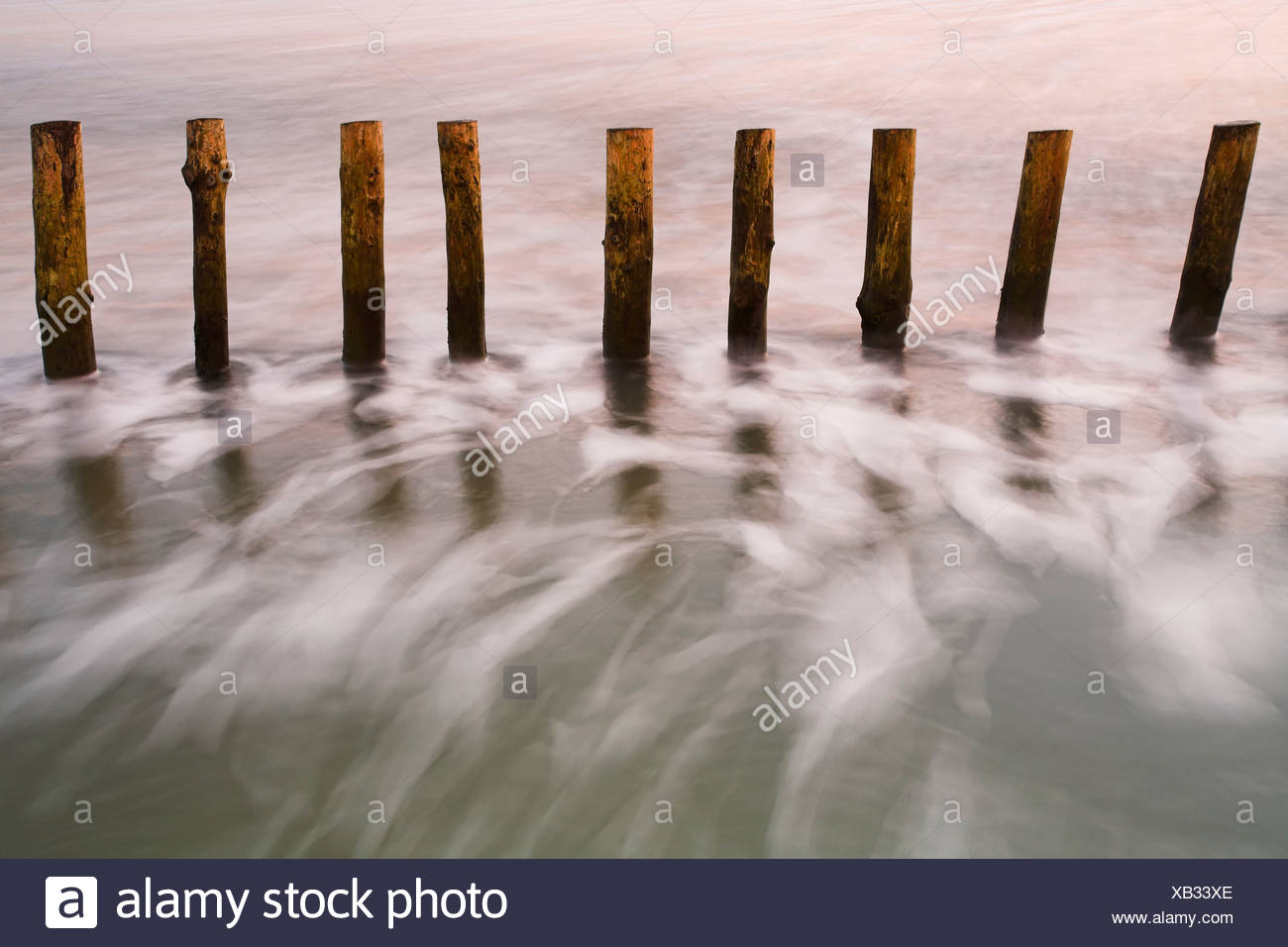 Wooden posts in the sea at West Wittering, Sussex, England. - Stock Image