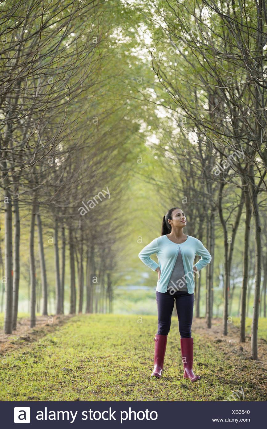 A woman in two rows of trees looking upwards. Stock Photo