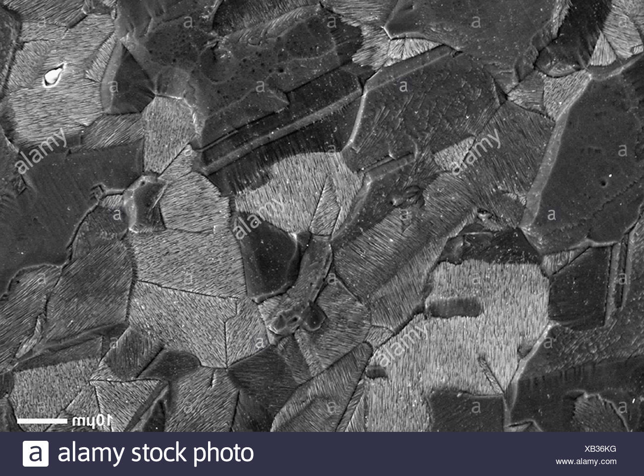 Scanning Electron Micrograph of fracture surface of stainless steel, rouged and etched sample - Stock Image