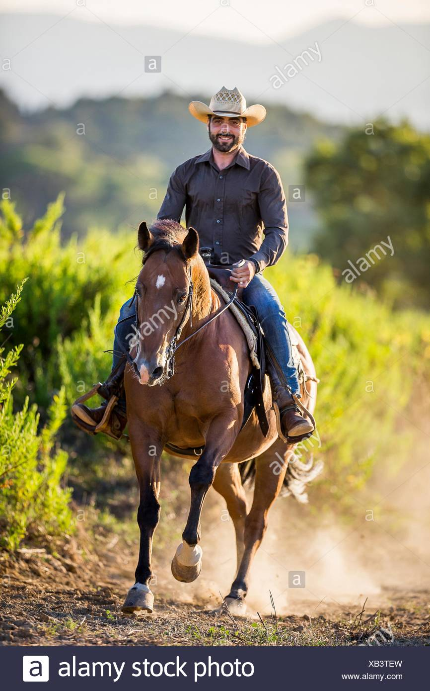 American Quarter Horse Rider On Western Horse In Gallop Italy Stock Photo Alamy