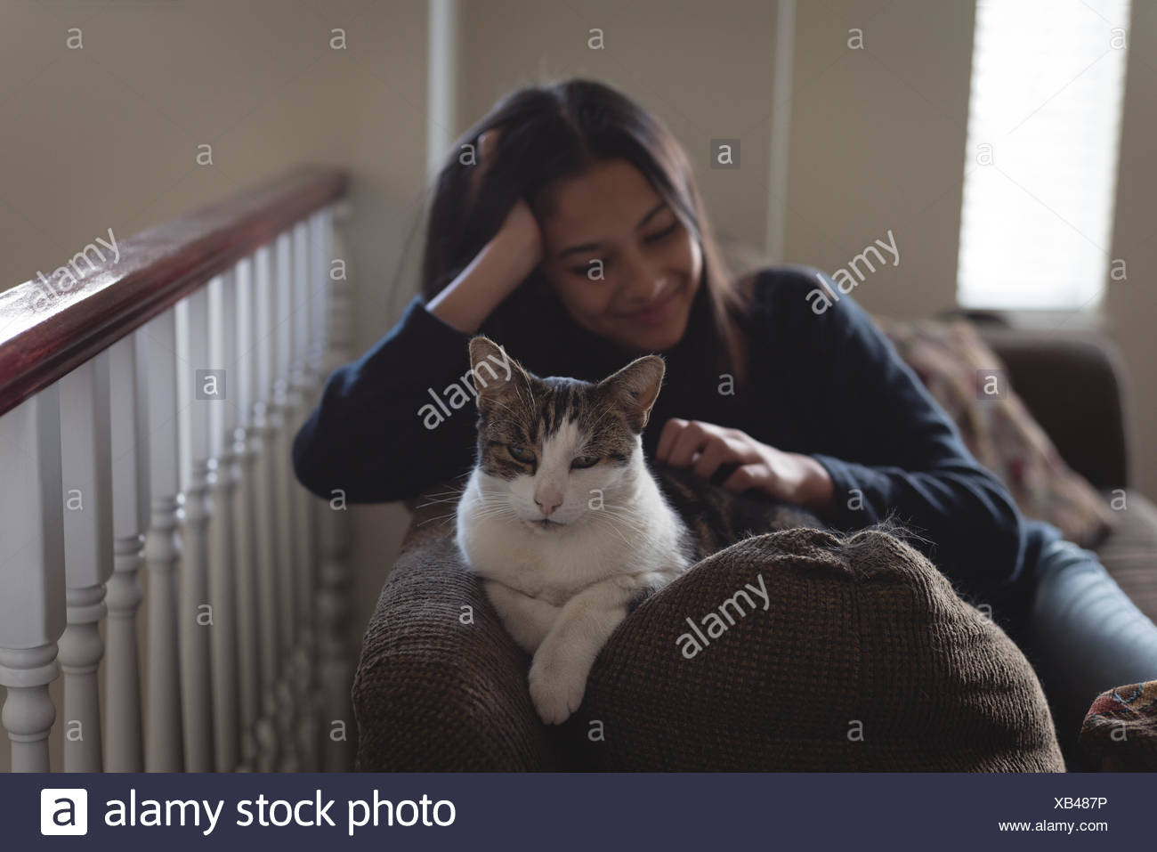 Teenage girl sitting with cat on sofa in living room - Stock Image