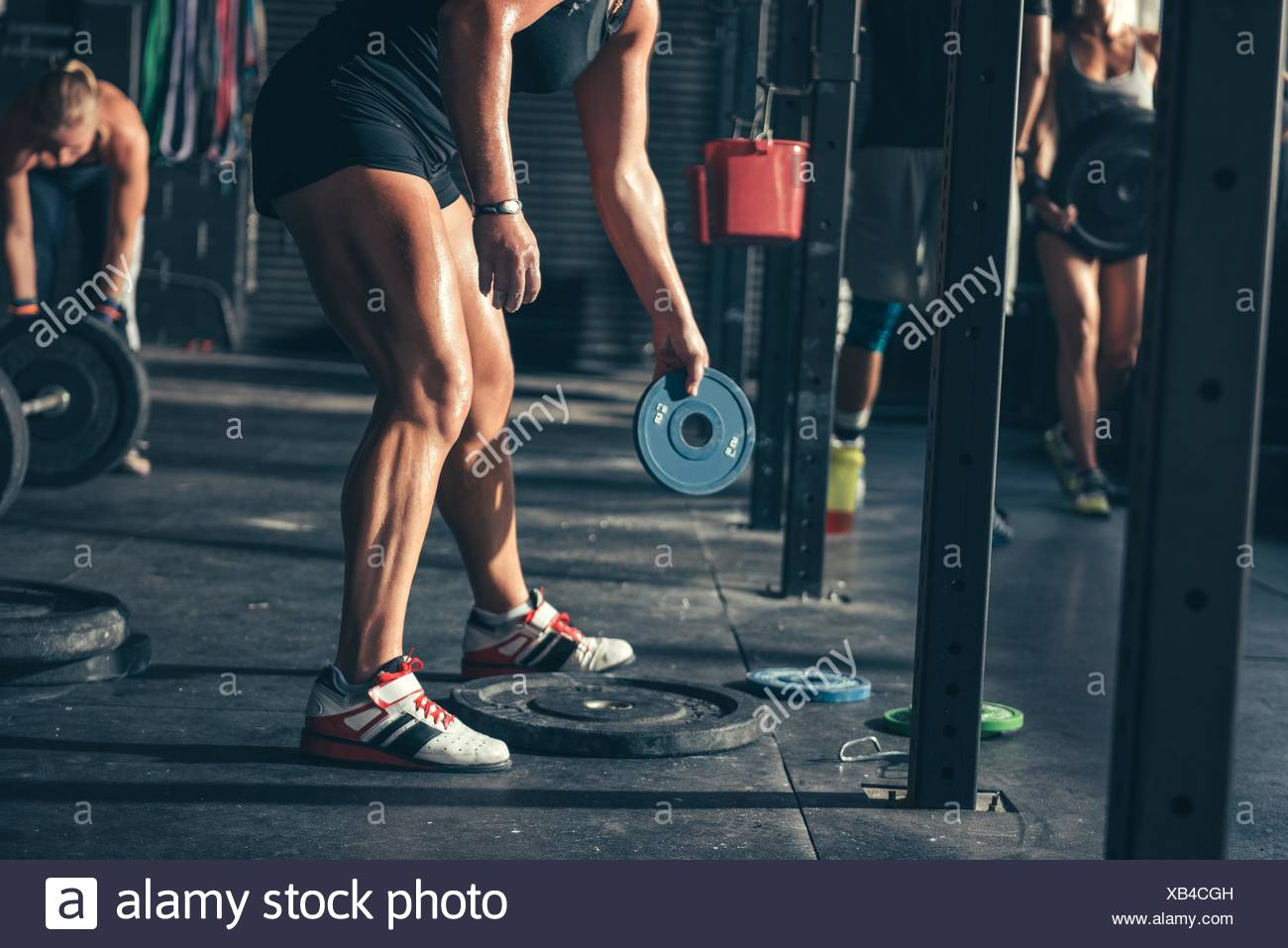 Cropped view of people preparing weights for barbells  in gym - Stock Image