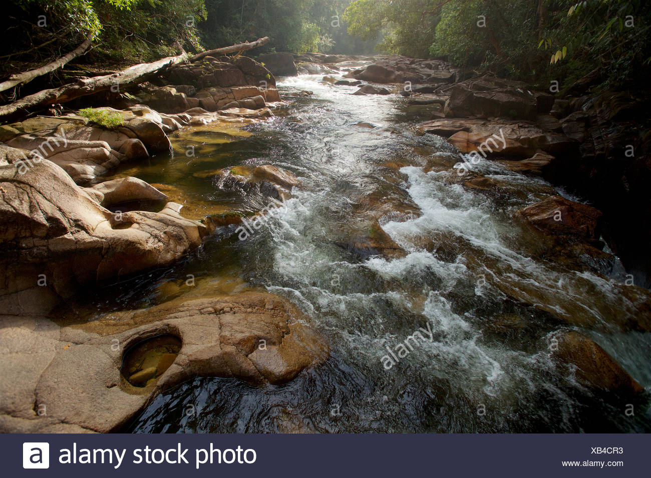 Granite rock lined riverbed with potholes in the upper Siduk River deep in Gunung Palung National Park's pristine rain forest interior. - Stock Image
