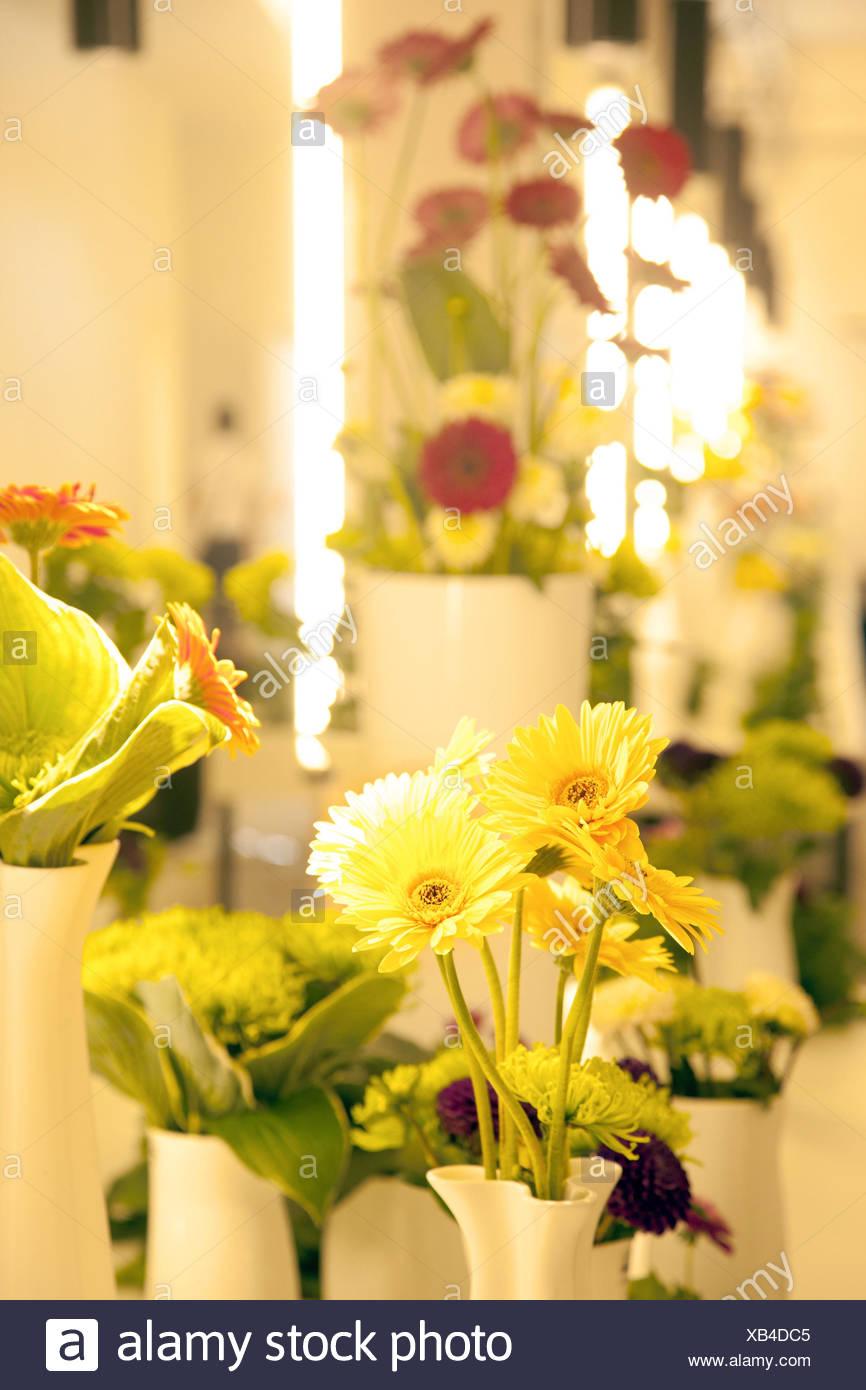 Flowers, vases, yellow, gerbera, dahlias, - Stock Image