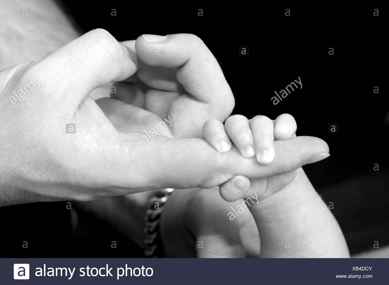babys hand lying in fathers hand - Stock Image