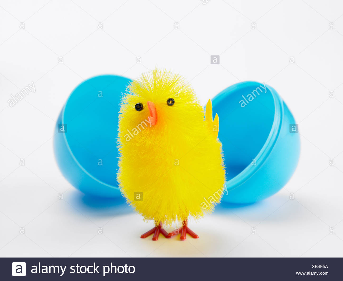 Easter Chick Hatching Out Of Egg - Stock Image