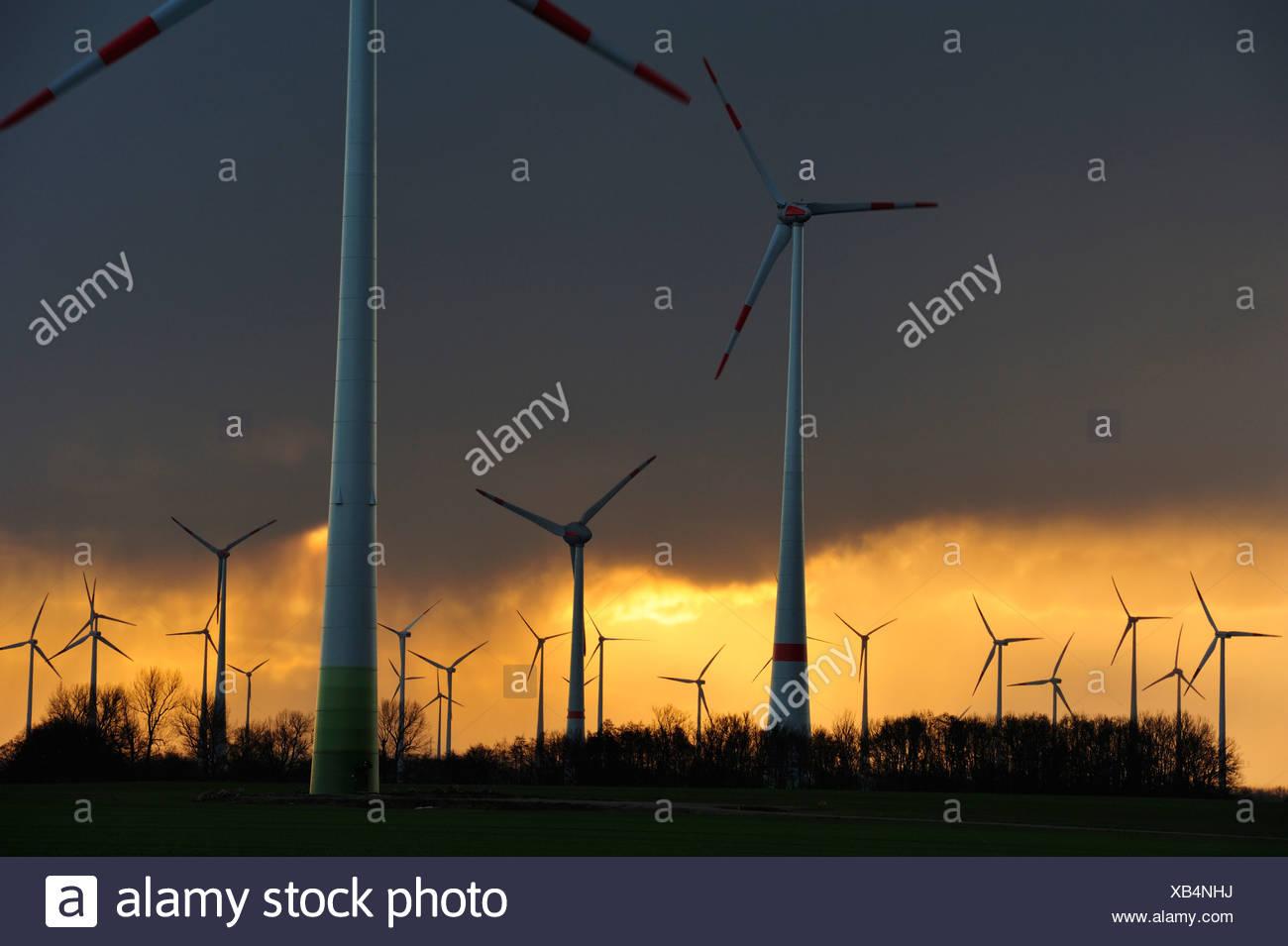 Wind farm, near Werder, Mecklenburg-Vorpommern, Germany - Stock Image