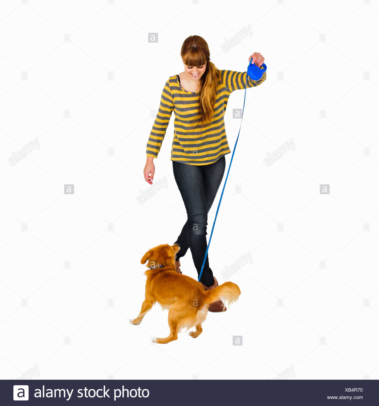 Smiling woman walking dog - Stock Image