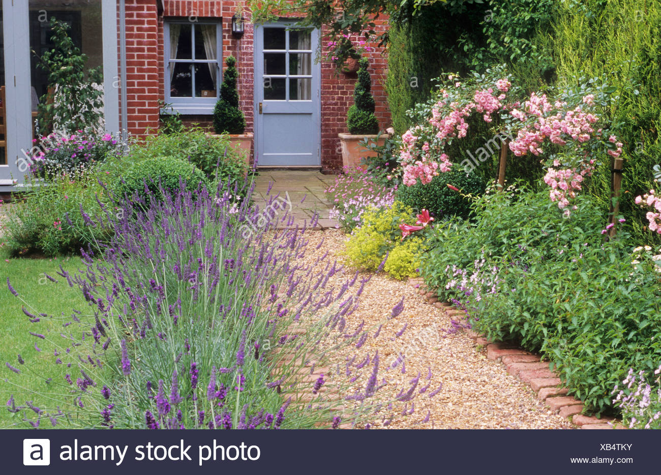Brick And Gravel Path Borders With Lavender Rosa The Fairy House