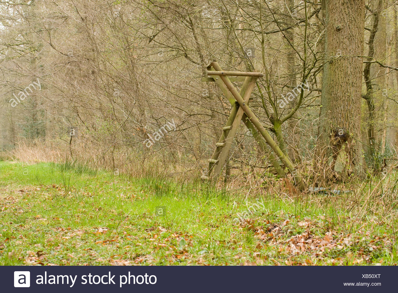 Een hoogzit wordt in Duitsland veel gebruikt voor observatie en jacht. Elevated position for hunting and observing game. - Stock Image