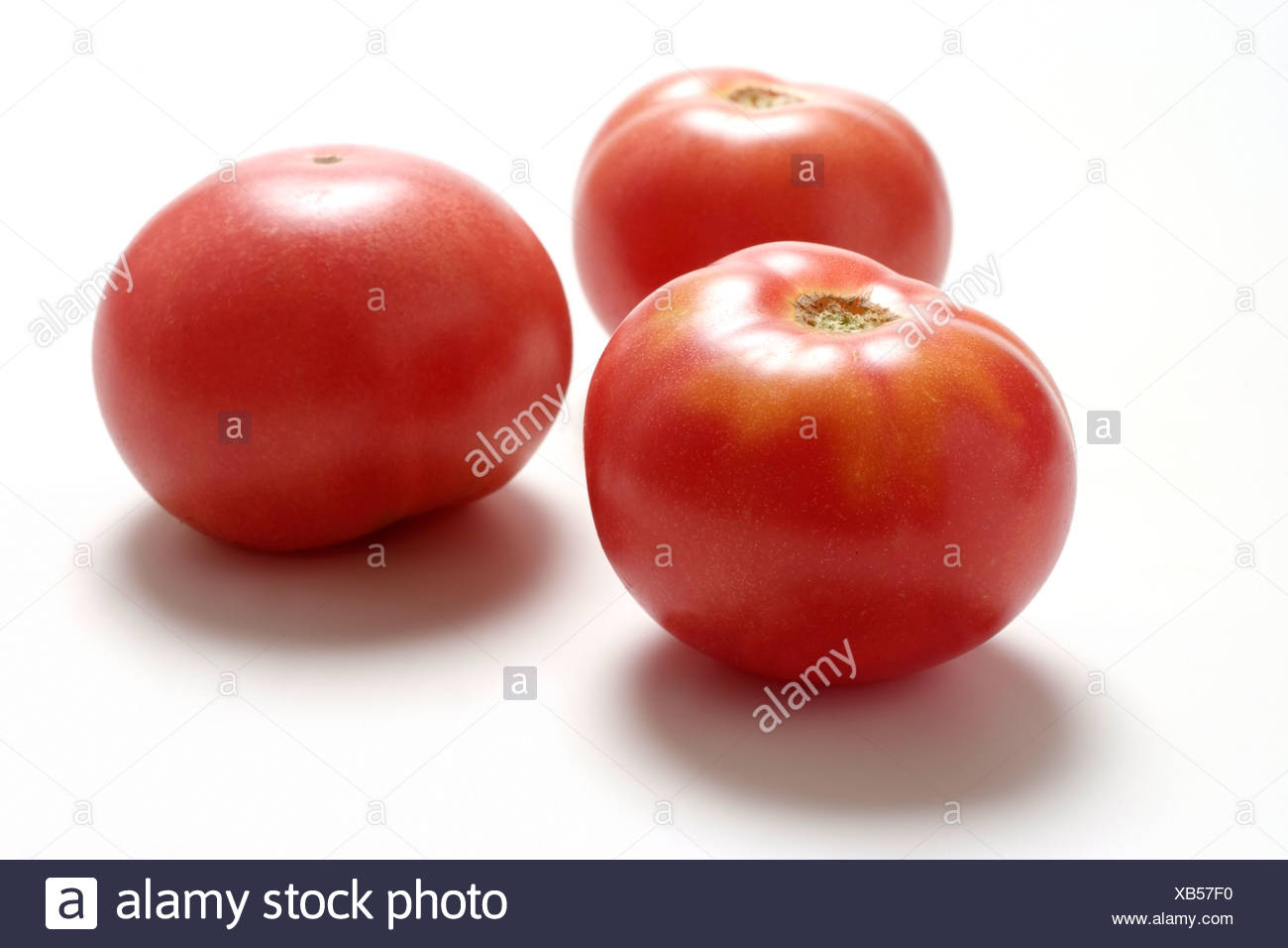Tomato varieties: Red russian tomato - Stock Image
