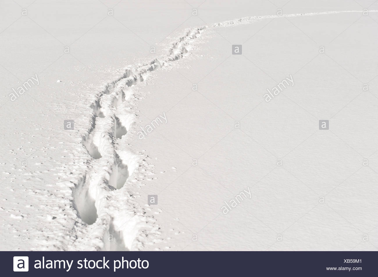Foot path through deep snow. - Stock Image
