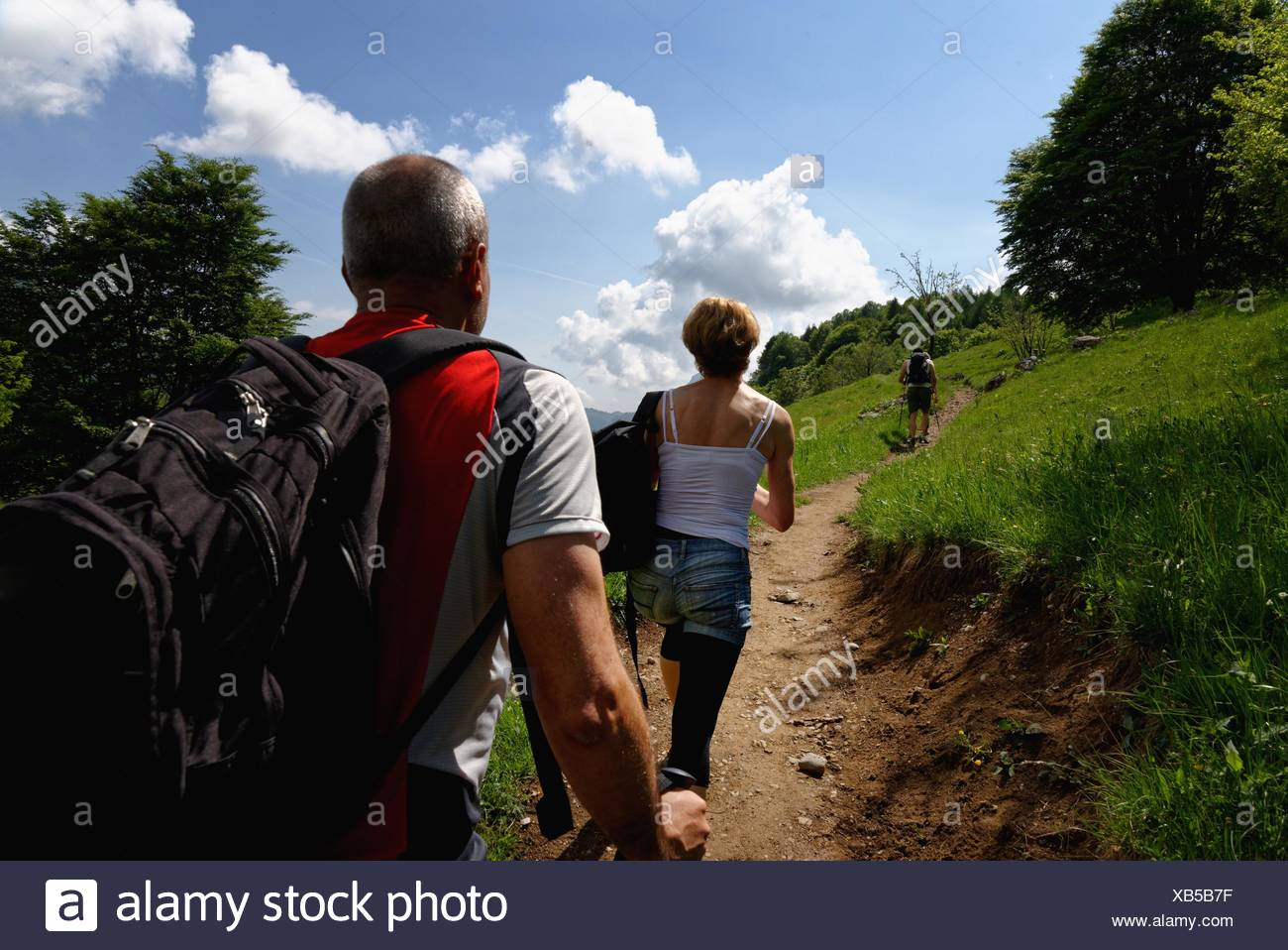 Rear view of three mature hikers hiking up path - Stock Image