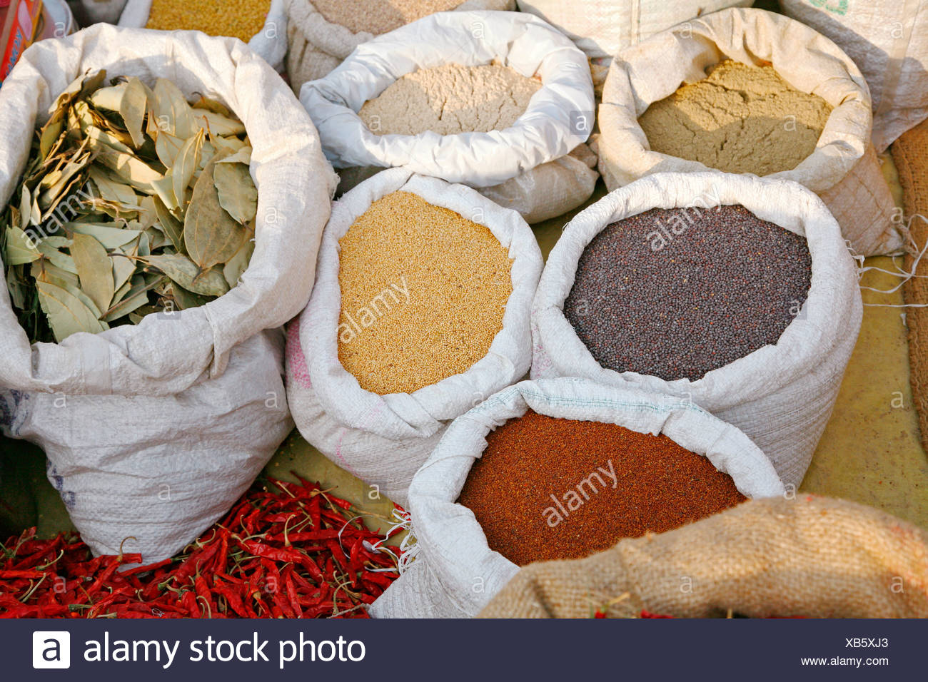 India, sacks of spices - Stock Image