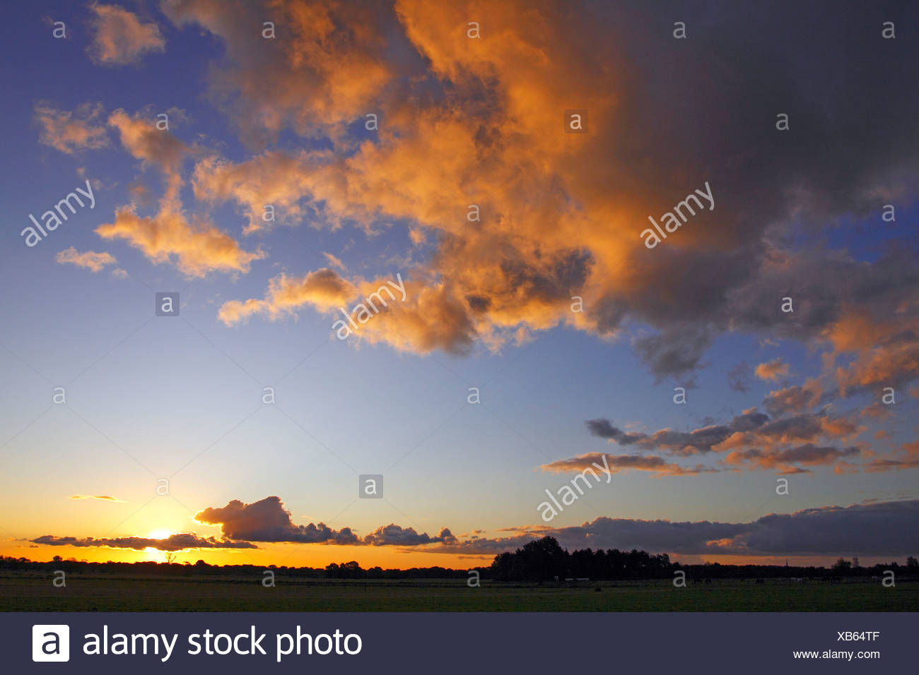 Dramatic sky with clouds illuminated from below by the late evening sun at sunset, landscape in Oberalsterniederung Nature Rese - Stock Image